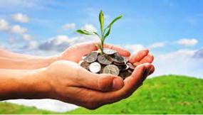किसानों को बगैर ब्याज के तीन लाख का कर्ज, 50 साल पुराने पेड़ों का संरक्षण करेगी सरकार