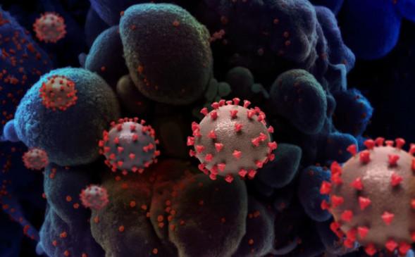 कहां से आया कोरोनावायरस? नेचुरल है या लैब से लीक, जानिए इससे जुड़ी थ्योरी किस ओर करती है इशारा