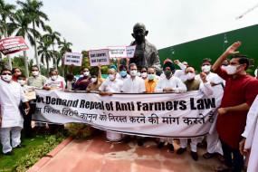 संसद परिसर में कृषि कानून के खिलाफ प्रदर्शन, राहुल गांधी समेत कई कांग्रेस सांसद शामिल