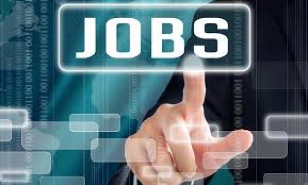 JOBS : महाराष्ट्र में  स्वास्थ्य सहित कई विभागों में 15 हजार 511 पदों पर होगी भर्ती