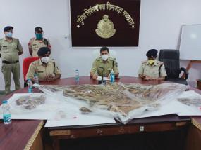 खुलासा: बालाघाट के किरनापुर में करंट लगाकर कर रहे टाइगर का शिकार, आरोपी गिरफ्तार