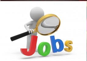 सरकारी नौकरी: RPSC के 900 से ज्यादा पदों पर निकली भर्तियां, 27 अगस्त आवेदन की अंतिम तारीख