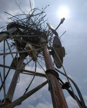 मादा चील से तीन विभाग परेशान -दो माह से थाने का नेटवर्क ठप ,टावर में चील ने घोंसला बनाकर दिए अंडे ,अब उसके बच्चों के उड़ने का इंतजार