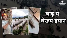 शिवपुरी: बाढ़ से बेहाल- सड़क पर निकला मगरमच्छ, लोगों ने पटक पटक कर खींची सेल्फी