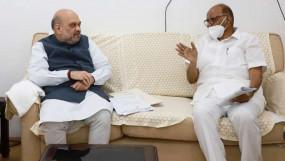 शरद पवार ने अमित शाह से मुलाकात की, अटकलों पर एनसीपी सुप्रीमो बोले- आधिकारिक बैठक थी