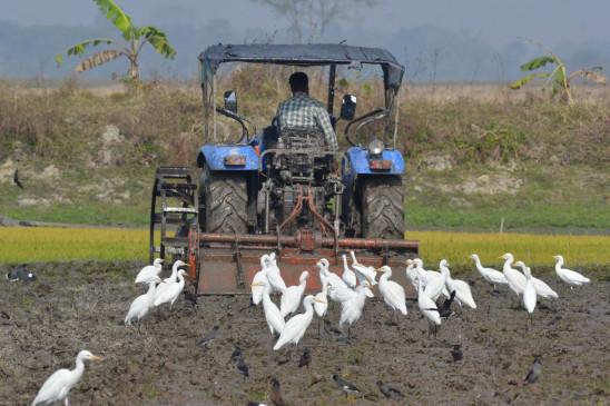 कृषि उत्पादक समर्थन को फिर से व्यवस्थित करें - bhaskarhindi.com