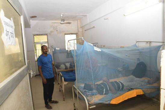 पाकिस्तान में बढ़ रहे डेंगू के मामले, अस्पतालों में बेड की किल्लत, मरीजों को भर्ती करने से किया जा रहा इंकार